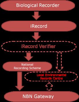 iRecord data flow